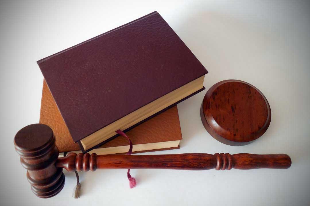 laureati in giurisprudenza